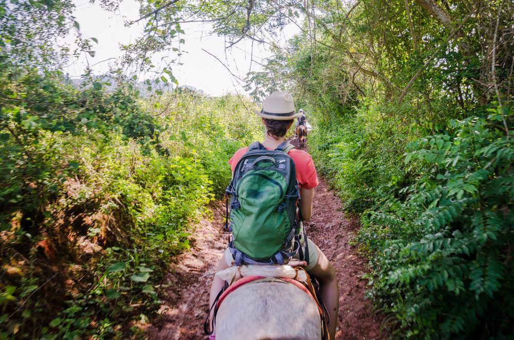 Paseos a caballo en Santa Rita
