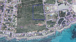 Gran finca rústica con 3,6 ha en Punta Prima